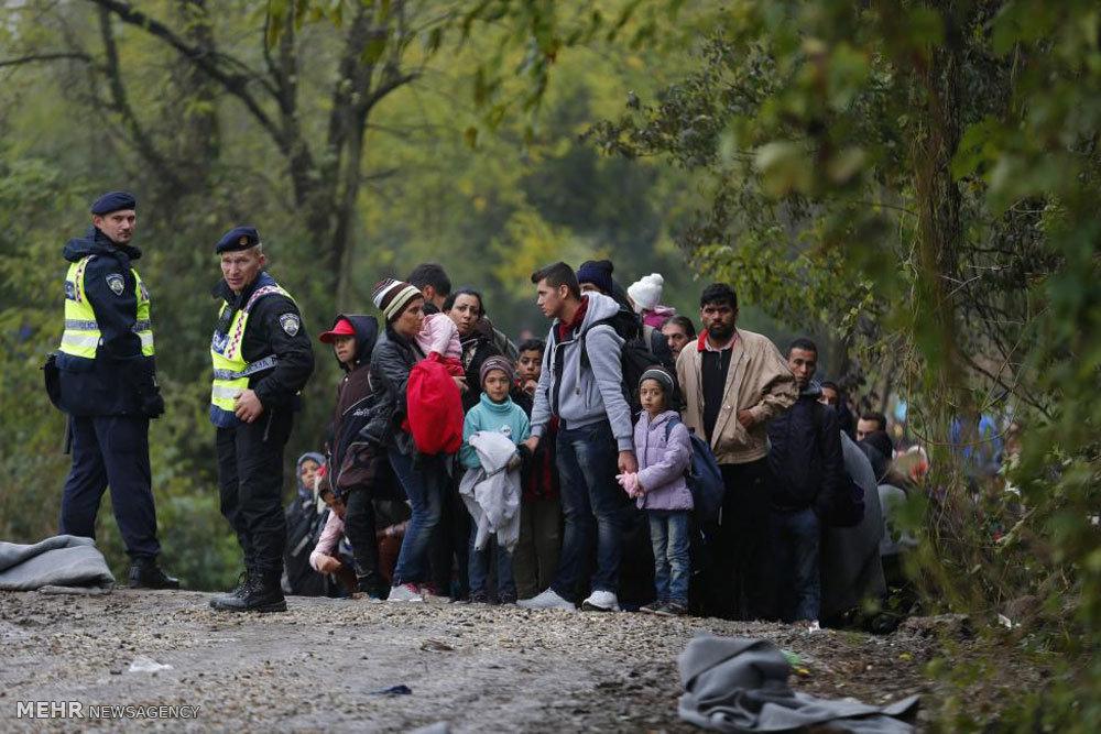 راتب اللاجئ في بلجيكا