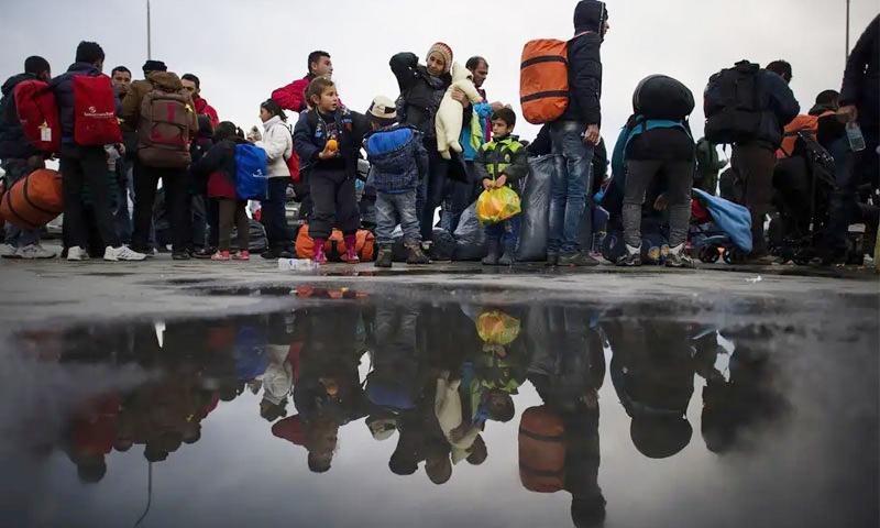 قوانين اللجوء في بلجيكا