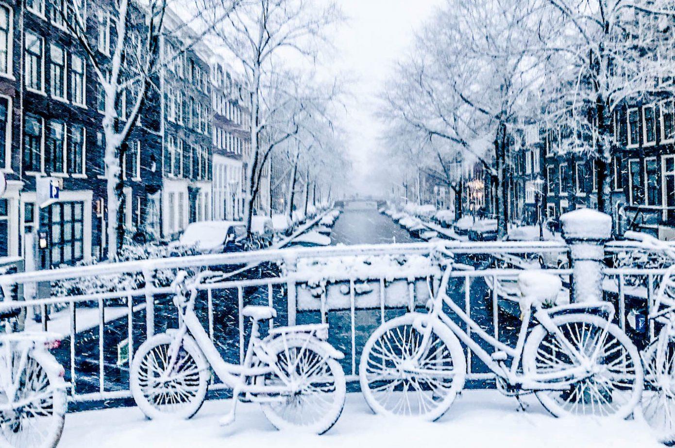 مساوئ اللجوء في هولندا