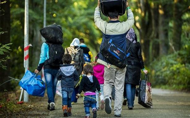 ماذا بعد رفض طلب اللجوء في بلجيكا