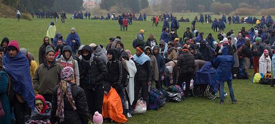 المادة 57 من قانون اللجوء في النمسا